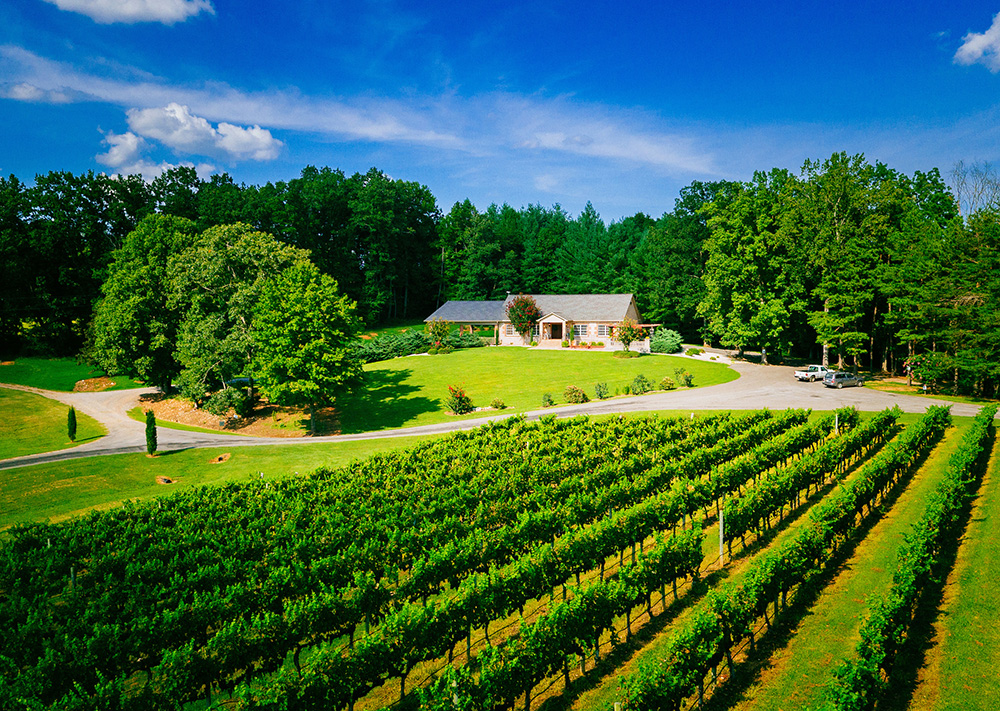 Stony Knoll Vineyard for the Yadkin Valley Winter Wine Passport 2017 - 2018