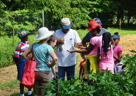 Mingle with Nature at Minglewood Farm & Nature Preserve