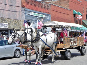 Mayberry Mules & Wagon Rides